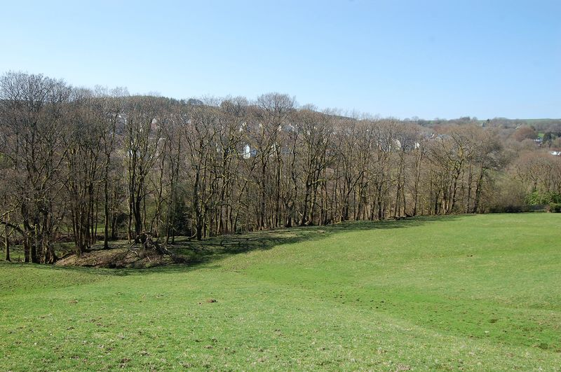 11.43 Acres of Pasture Land, Hendre Fields, Ynysybwl CF37 3LS