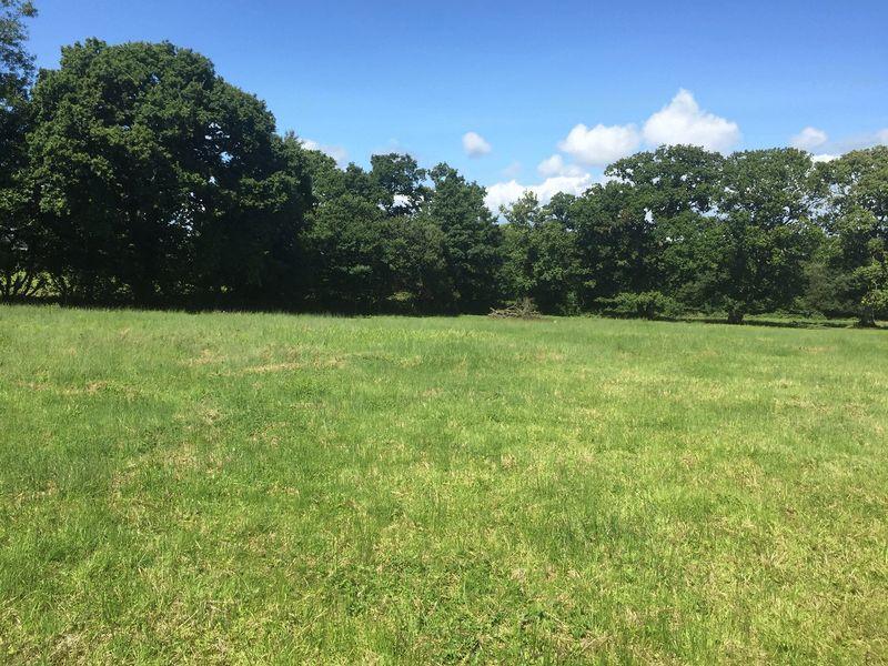15.260 Acres of Pasture Land & Woodland, Peterston Super Ely CF5 6LG
