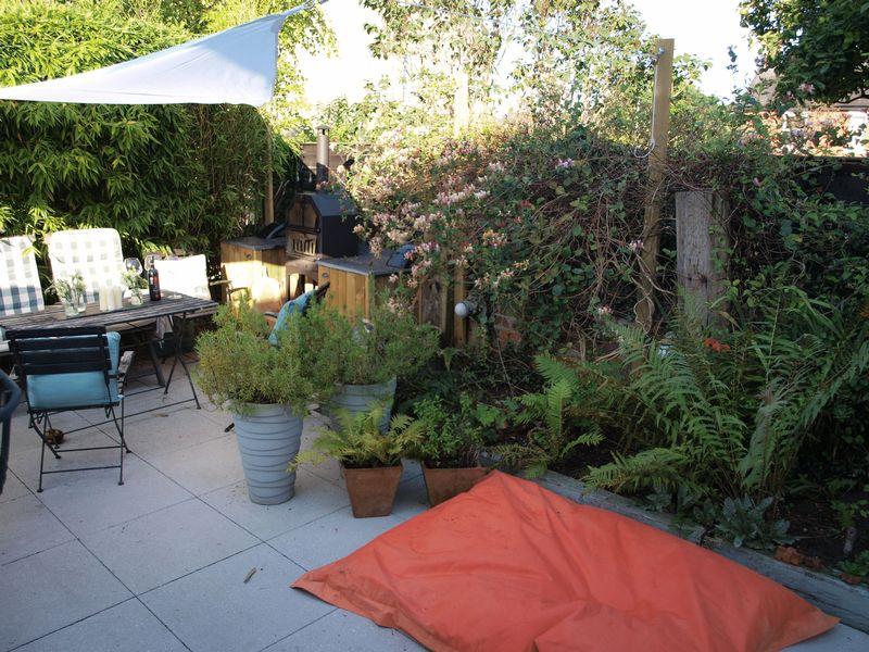 Courtyard Style Garden
