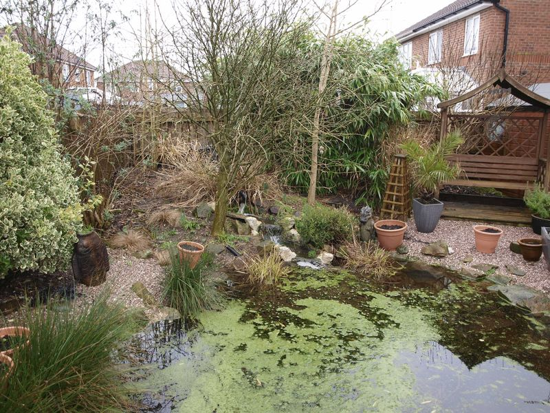 Pond & Seating Area