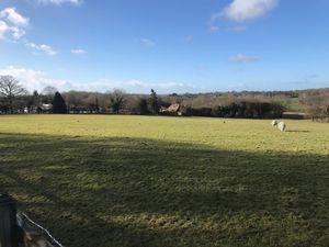 Grazing land to let Ashford Road Hamstreet Ashford Kent TN26 2EA - Angela Hirst - Estate Agents and Chartered Surveyors Farm and Land Agency across Kent and East Sussex