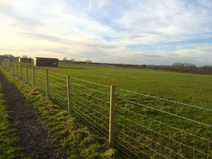 Equestrian land for sale, approximately 4 acres (un measured)£100,000 - Photo 3