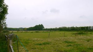 Approximately 2.9 acres of grazing land at Westmarsh, Canterbury for Sale£50,000 - Photo 3