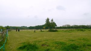 Approximately 2.9 acres of grazing land at Westmarsh, Canterbury for Sale£50,000 - Photo 6