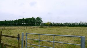 Approximately 2.9 acres of grazing land at Westmarsh, Canterbury for Sale£50,000 - Photo 5