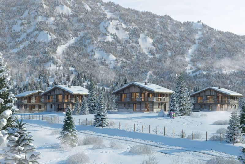 Les Flocons de Neige - 4 Bed Chalet Chalet in Chamonix