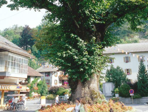 Central Samoens