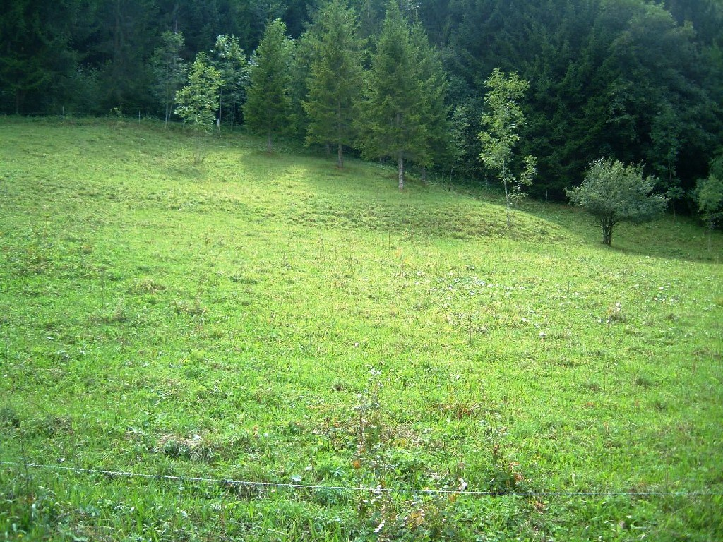 Excellent Building Land in Morillon'
