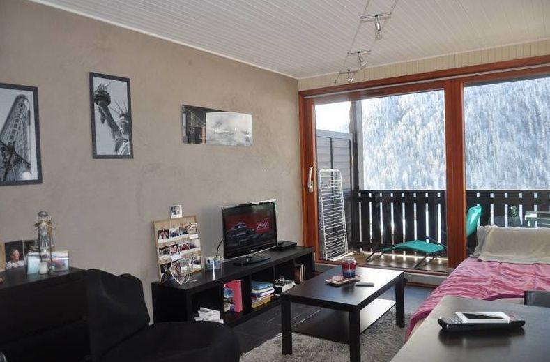 Studio Apartment in Chatel'