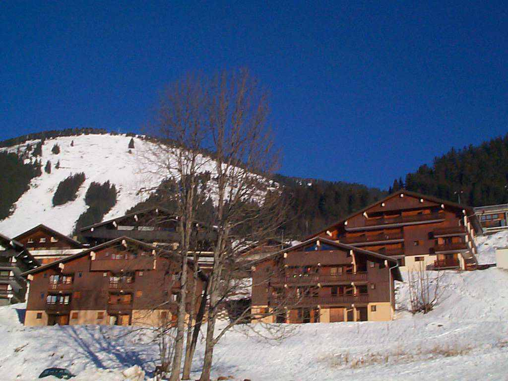 Apartment with Mezzanine in Chatel'