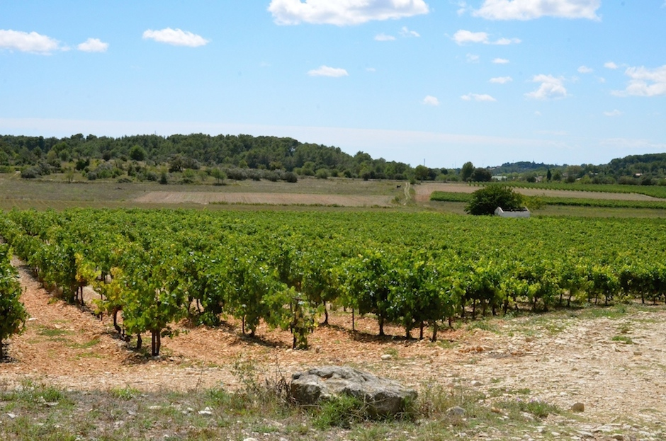 Country side around Mus, Languedoc