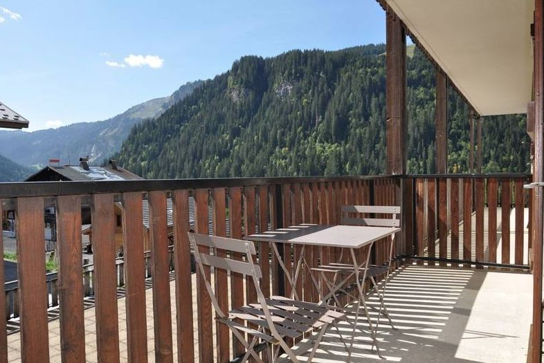 Apartment with Coin Montagne in Chatel'