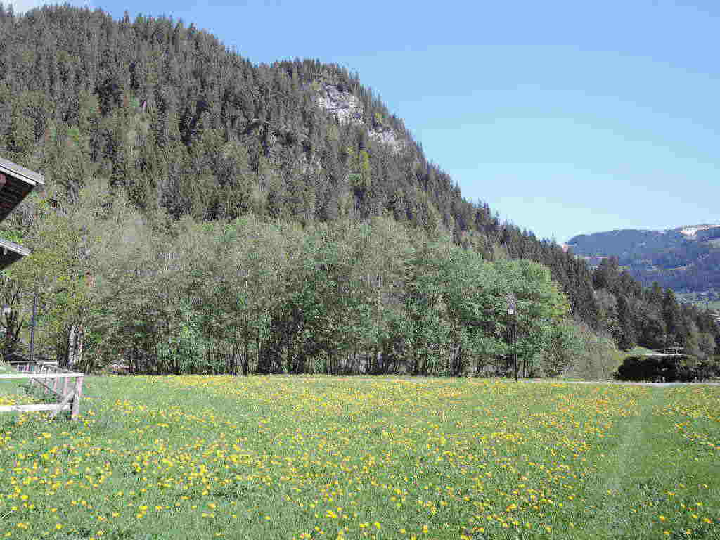 Land - Chatel Linga'