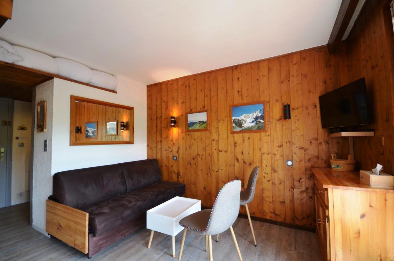 Superb Furnished Studio by Les Gets Ski Slopes'