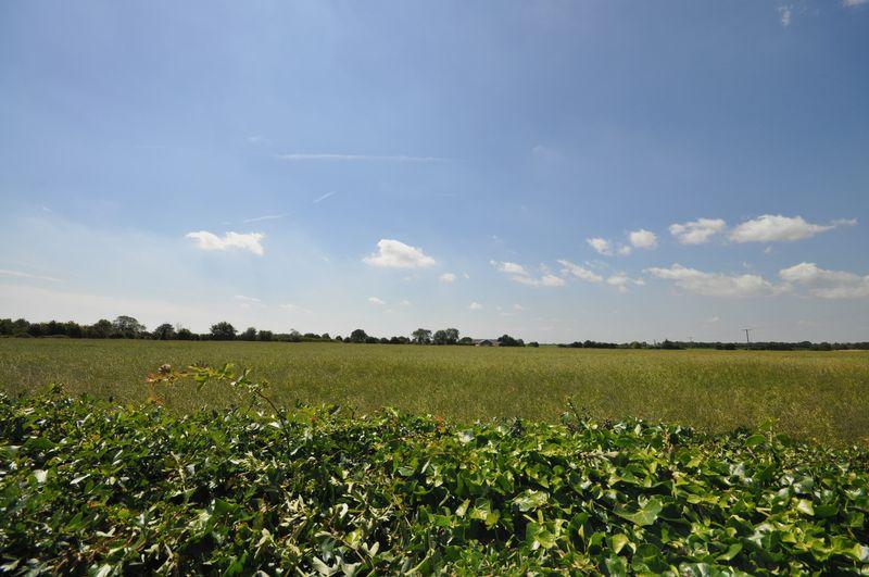Rural view from garden