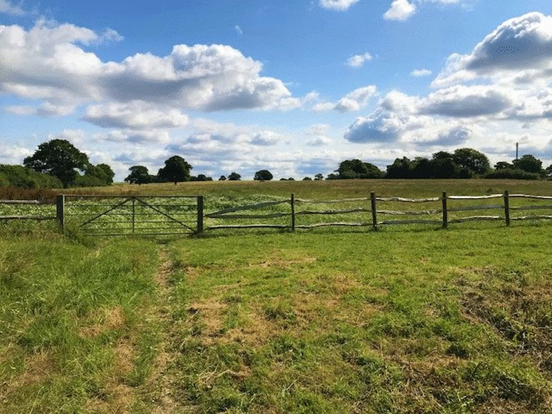 Land To Let At Hornash Lane, Shadoxhurst£600 PCM