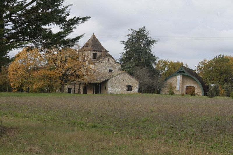 Organic vineyard with a 3 bed house, over 8 hectares of land and buildings for wine production
