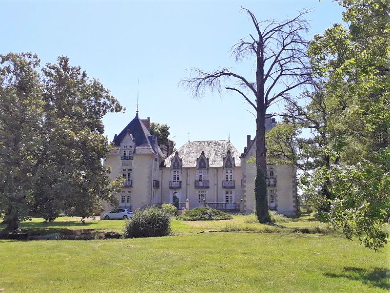 Super Chateau at an affordable price!