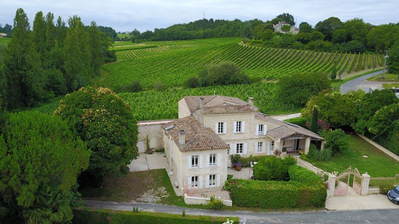 Thriving gîte business with vineyard