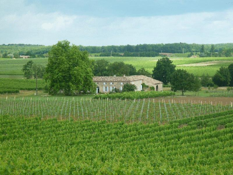 Gironde Stone house  amongst the vineyards