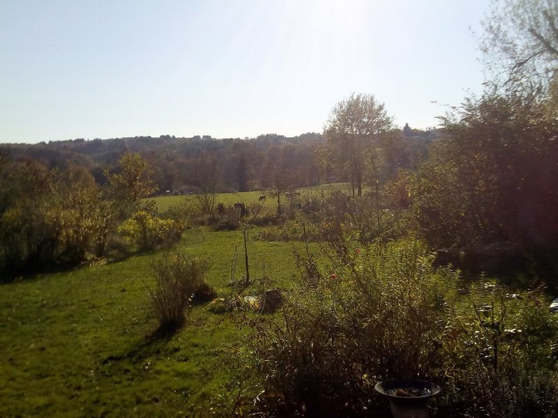 1 to live in, 1 to do up with great views from the garden